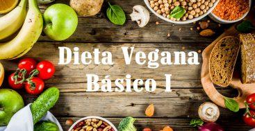 dieta vegetariana para diabetes tipo 1