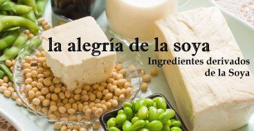 Serie de la Soya, Segunda Parte: Los Ingredientes Derivados de la Soya