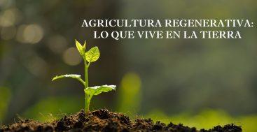 Los Pequeños De La Agricultura Regenerativa