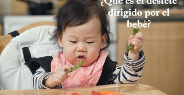 ¿Qué es el Destete Dirigido por el Bebé?
