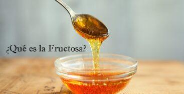 ¿Qué es la Fructosa?